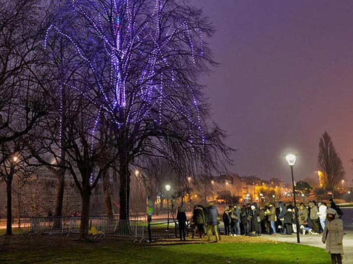 2017-janvier-arbre-a-voeux-souhait-inoow-design